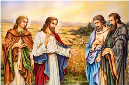 Suy Niệm & Cầu Nguyện (Dành cho Bậc Gia Đình) Bài 41 (Yuse Luca)