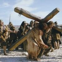 Bài 14: Cuộc Khổ Nạn Của Chúa Yesus