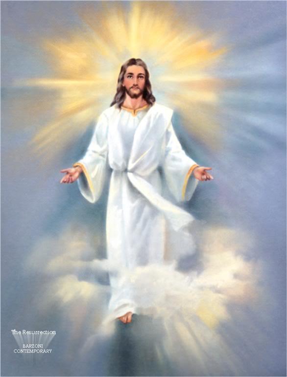Chia sẻ Lời Chúa Tuần 20 (TN A)
