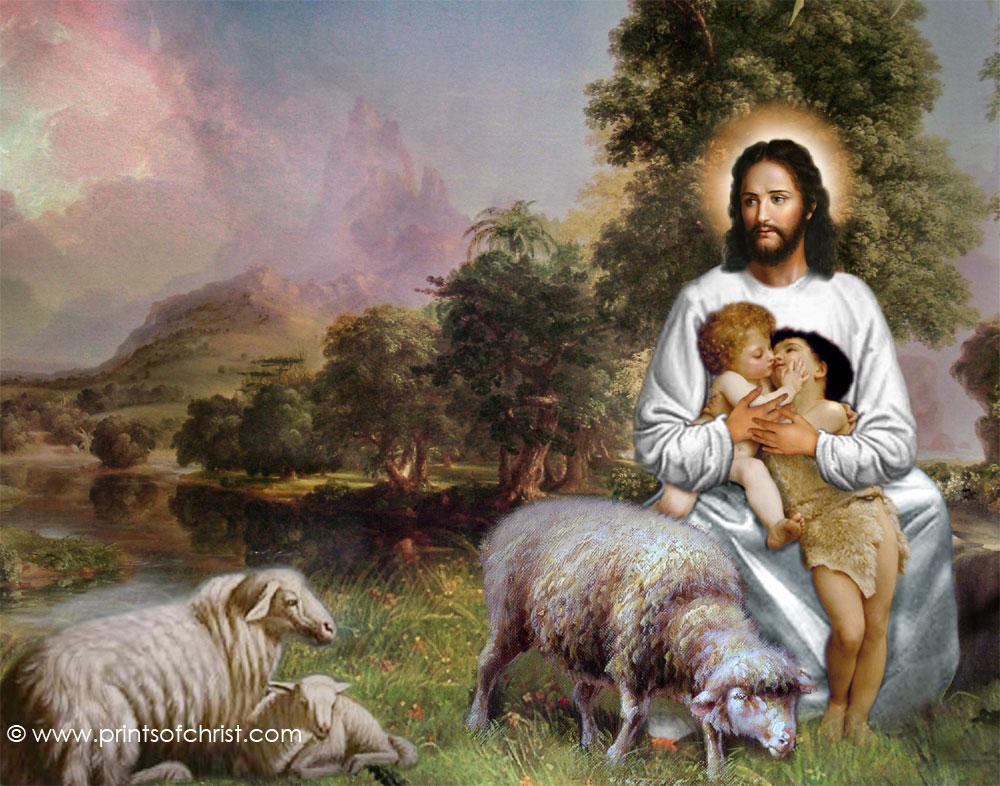 Chia sẻ Lời Chúa Tuần 16 (TN A)
