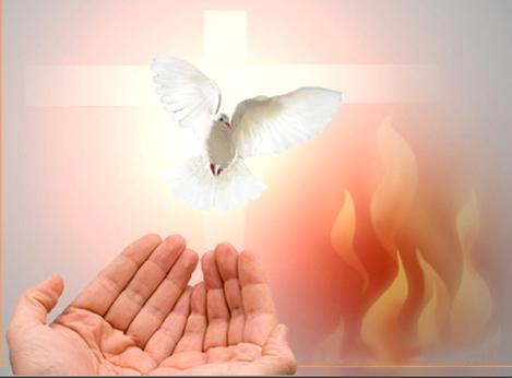 Chia sẻ Tin Mừng CN Chúa Thánh Thần Hiện Xuống - A / LM FX Vũ Phan Long