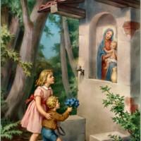 Phần 2 (Bài 7): Đức Cậy
