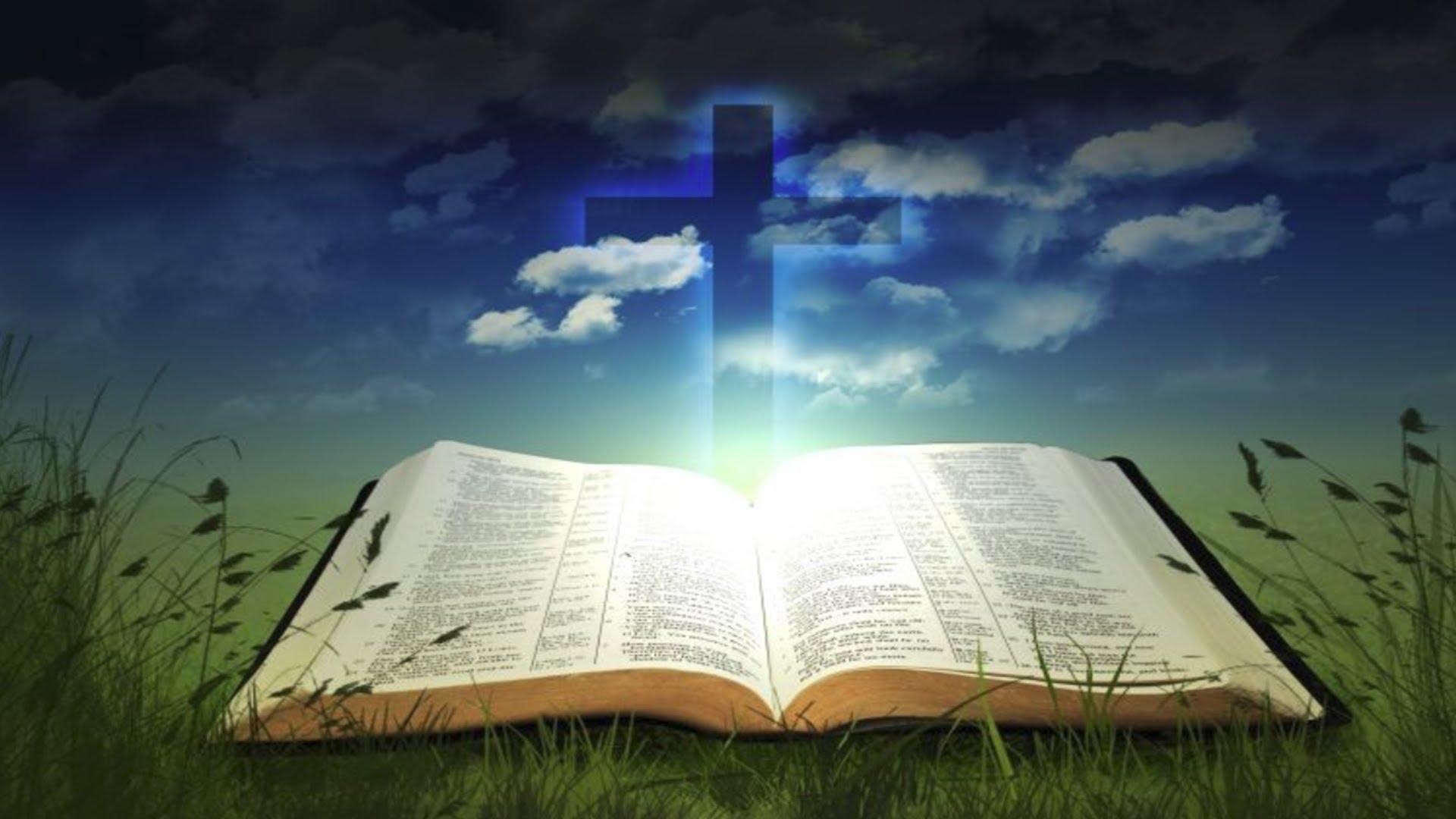 Sách Kinh Quanh Năm - Giáo xứ Tân Thái Sơn