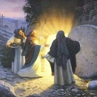 Phần 3(Bài 8): Bác Ái Hay Nhẫn Nhục