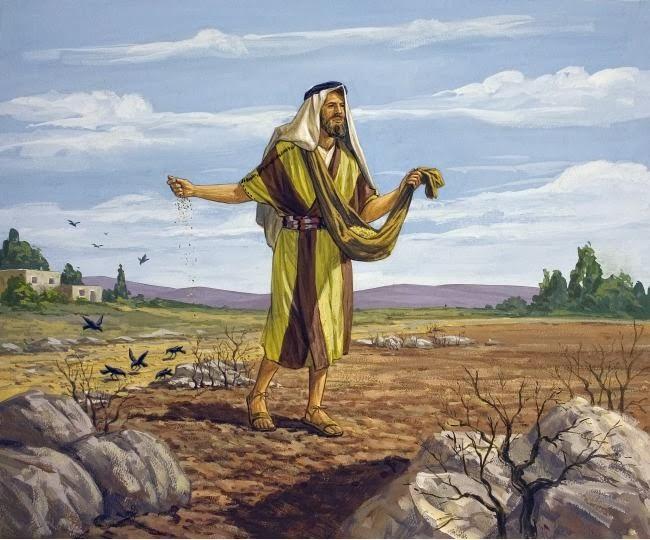 Tìm hiểu và sống Tin Mừng CN 15 Thường Niên A (Giuse Luca)