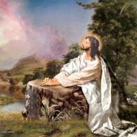 2- Tâm Sự - Cầu Nguyện