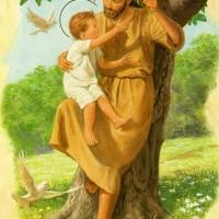 Bài 28,29,30: Đức Yuse Vào U Ngục; Sống Lại & Lên Trời; Vinh Quang Lên Trời